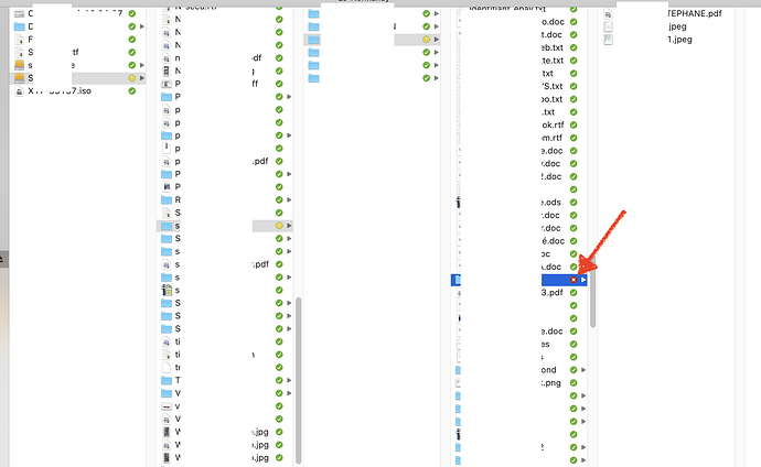 Capture d'écran 2020-10-27 à 13.10.08